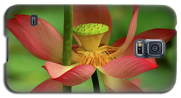 Galaxy S5 Case featuring the photograph Lotus Flower by Harry Spitz