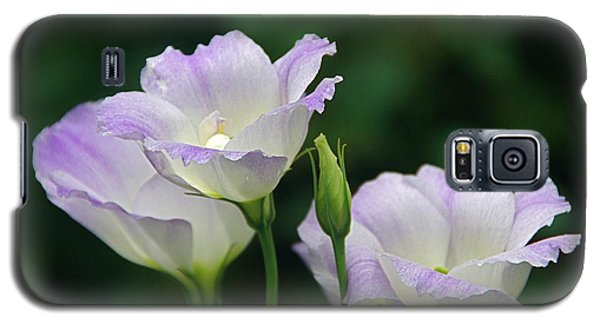 Galaxy S5 Case featuring the photograph Lovely Lisianthus by Byron Varvarigos