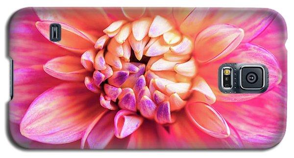 Magenta Dahlia Galaxy S5 Case