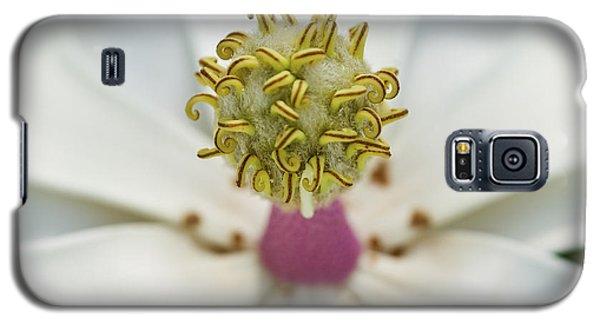 Magnolia Bloom Galaxy S5 Case by Rich Franco