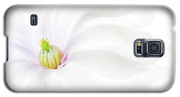 Galaxy S5 Case featuring the photograph Magnolia by Rebecca Cozart