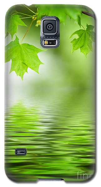 Maple Tree Galaxy S5 Case
