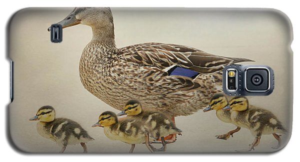March Of The Ducklings Galaxy S5 Case