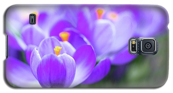 Galaxy S5 Case featuring the photograph Marching Into Spring by Rebecca Cozart