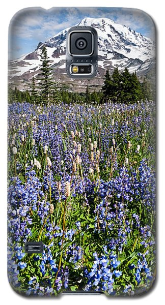 Meadow Of Lupine Near Mount Rainier Galaxy S5 Case
