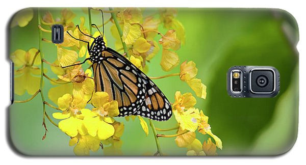 Monarch Butterfly On Yellow Orchids Galaxy S5 Case