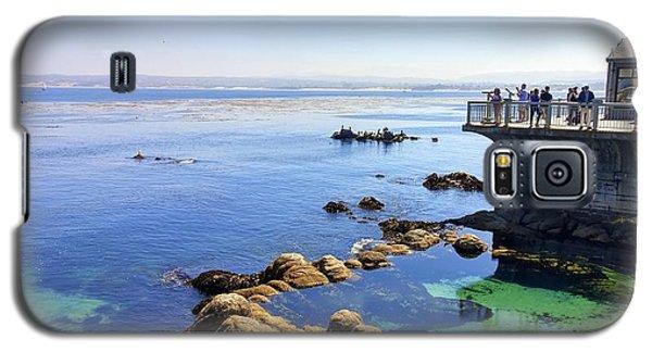 Montery Bay Galaxy S5 Case