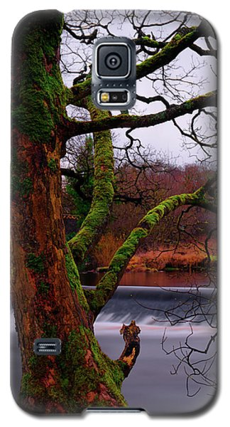 Mossy Tree Leaning Over The Smooth River Wharfe Galaxy S5 Case