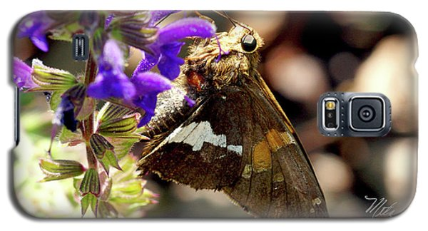 Moth On Purple Flower Galaxy S5 Case