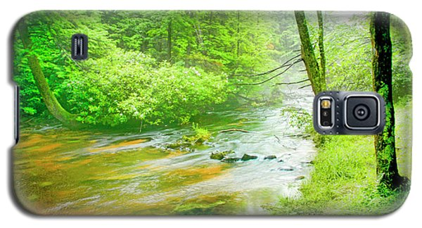 Mountain Stream, Pocono Mountains, Pennsylvania Galaxy S5 Case by A Gurmankin