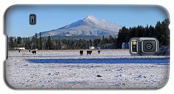 Mt. Pilchuck Galaxy S5 Case by Rebecca Parker