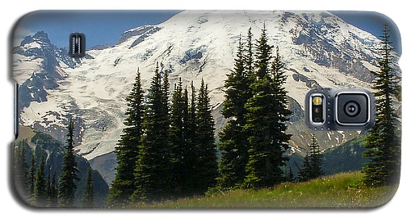 Mt. Rainier Alpine Meadow Galaxy S5 Case