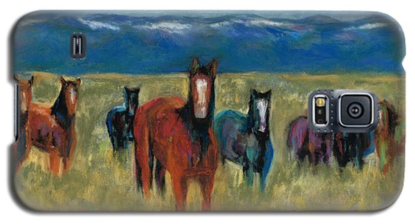 Mustangs In Southern Colorado Galaxy S5 Case