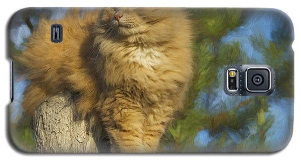 My Cat Galaxy S5 Case by Vladimir Kholostykh