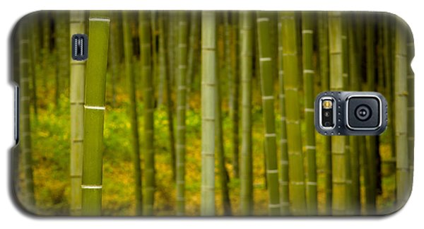 Mystical Bamboo Galaxy S5 Case