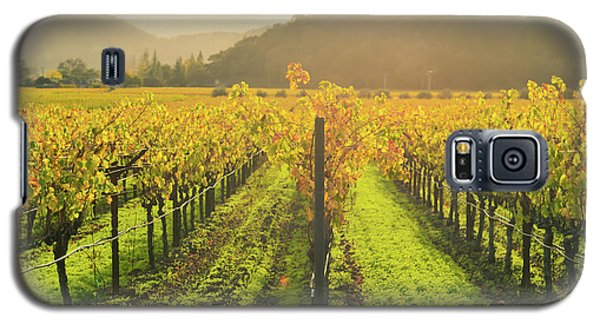 Napa Valley California Vineyard In The Fall Galaxy S5 Case