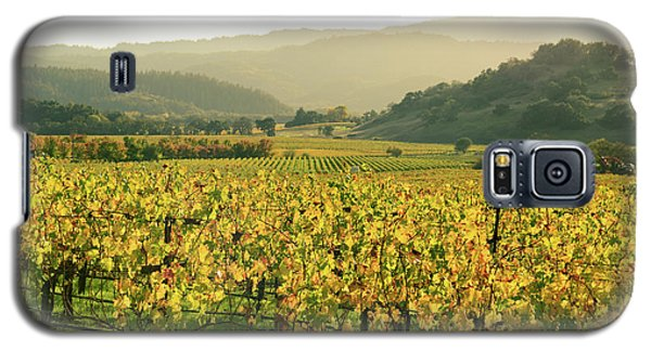 Napa Valley In Autumn Galaxy S5 Case