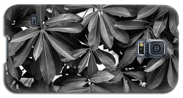 Galaxy S5 Case featuring the photograph Nature Background, Green Leaves, Flowers In Natural Light And Sh by Jingjits Photography