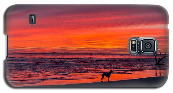 Nature Galaxy S5 Case by RC Pics