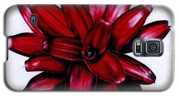 Neoregelia 'christmas Cheer' Galaxy S5 Case