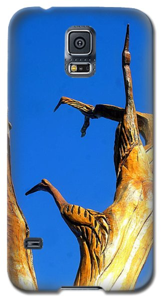 New Orleans Bird Tree Sculpture In Louisiana Galaxy S5 Case