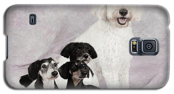 Fur Friends Galaxy S5 Case by Erika Weber