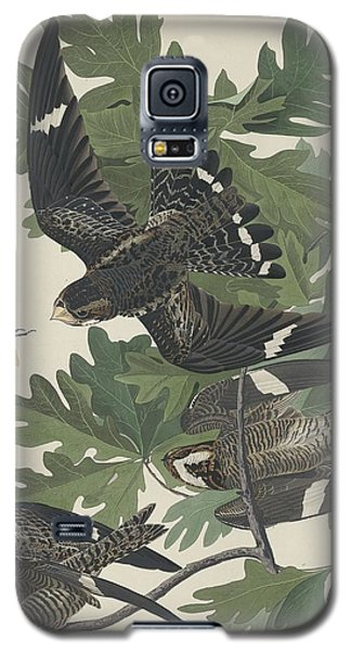 Night Hawk Galaxy S5 Case