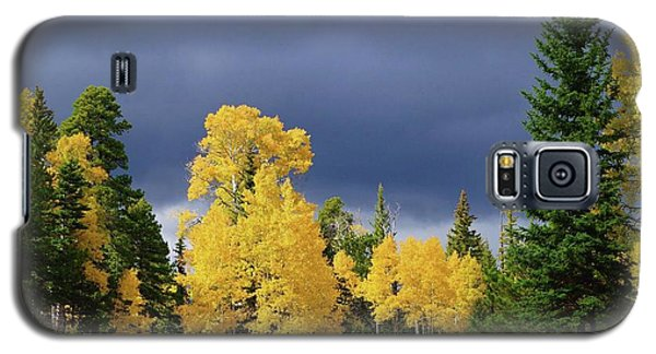 North Rim Fall  Galaxy S5 Case