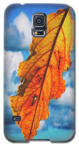 October Leaf B Fine Art Galaxy S5 Case