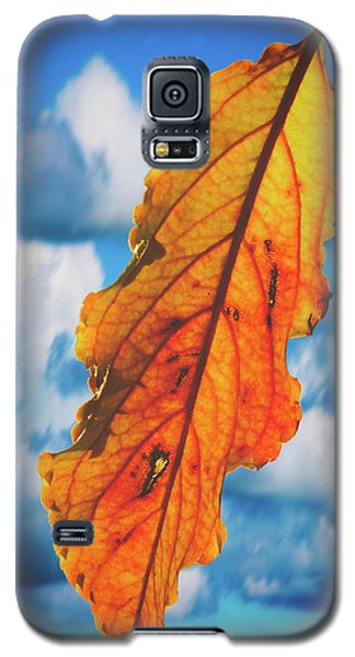 October Leaf B Fine Art Galaxy S5 Case