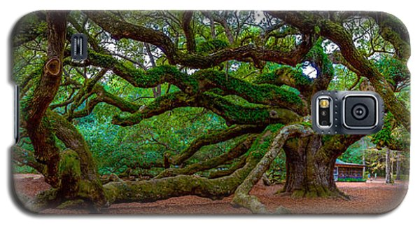Old Southern Live Oak Galaxy S5 Case