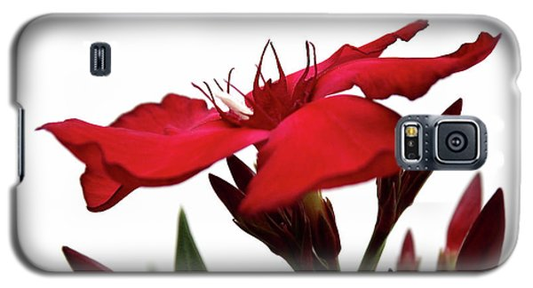 Oleander Blood-red Velvet 3 Galaxy S5 Case