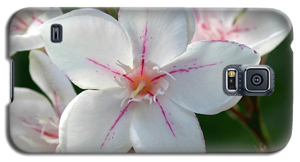 Oleander Harriet Newding  2 Galaxy S5 Case