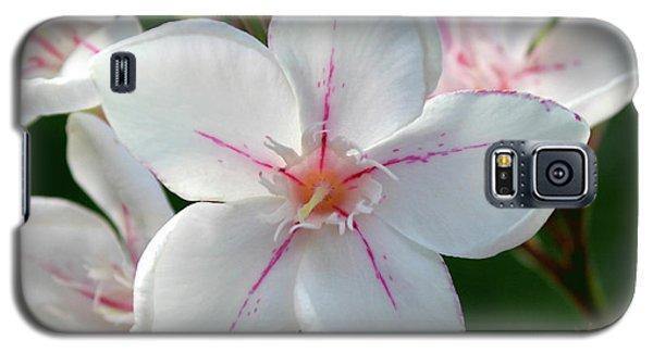 Oleander Harriet Newding  2 Galaxy S5 Case