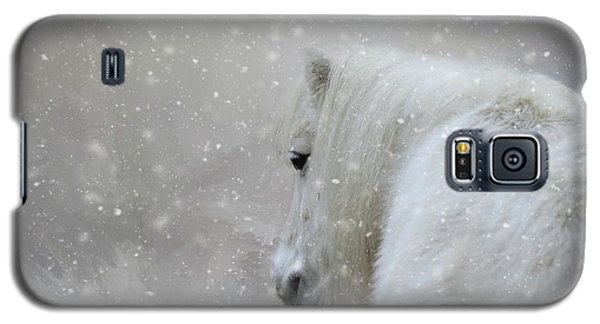 On A Cold Winter Day Galaxy S5 Case