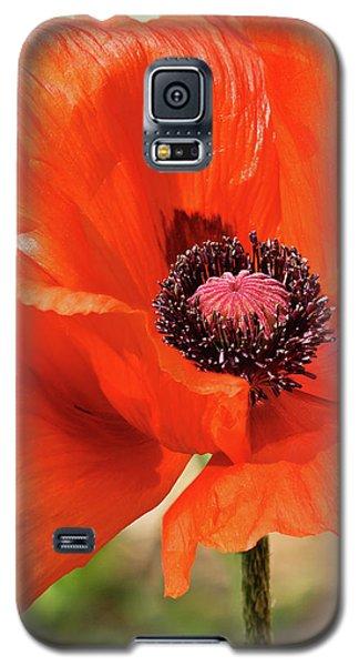 On The Fringe Galaxy S5 Case