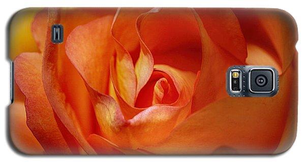 Orange Passion Galaxy S5 Case