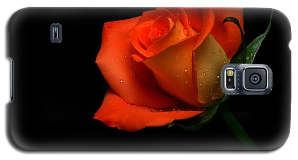 Orangette Galaxy S5 Case