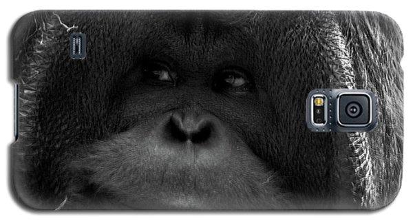 Orangutan Galaxy S5 Case by Martin Newman