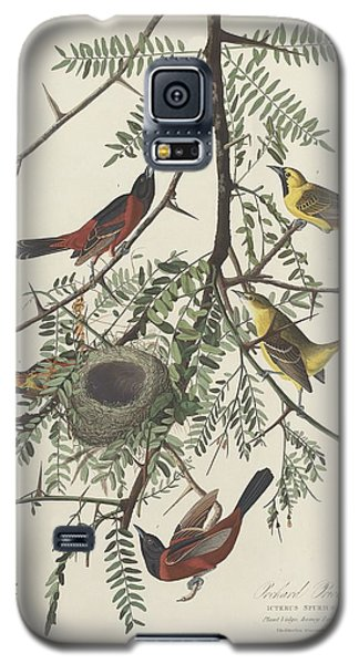 Orchard Oriole Galaxy S5 Case by Anton Oreshkin