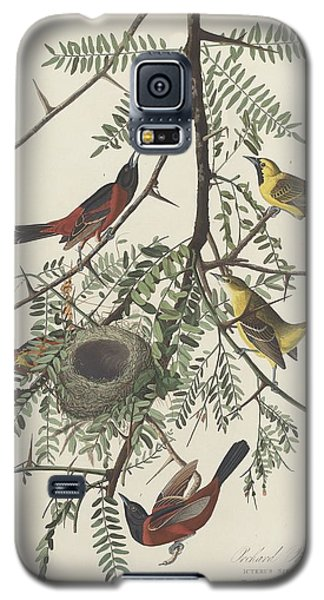 Orchard Oriole Galaxy S5 Case by Rob Dreyer
