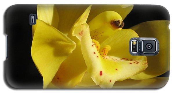 Orchid Macro Galaxy S5 Case