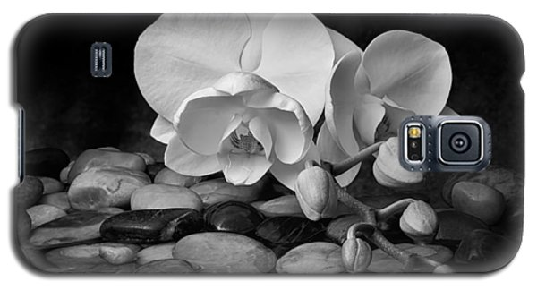 Orchid Galaxy S5 Case - Orchid - Sensuous Virtue by Tom Mc Nemar