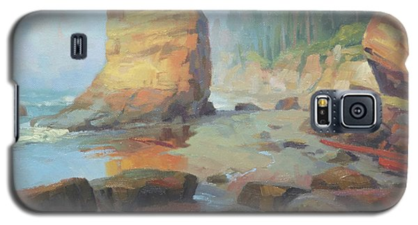 Otter Galaxy S5 Case - Otter Rock Beach by Steve Henderson