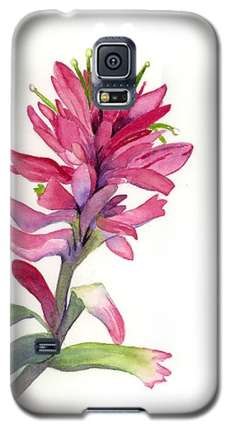 Paintbrush Galaxy S5 Case