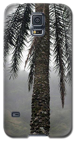Palm, Koolau Trail, Oahu Galaxy S5 Case
