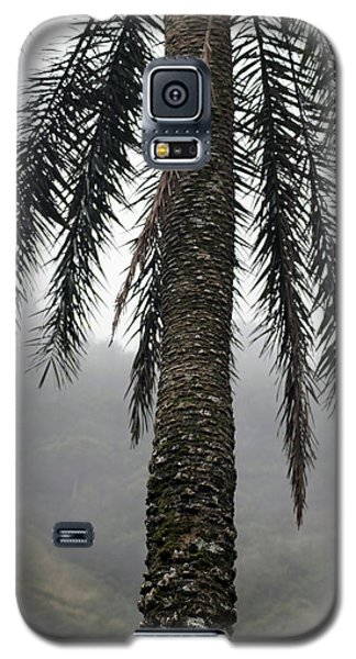Palm, Koolau Trail, Oahu Galaxy S5 Case