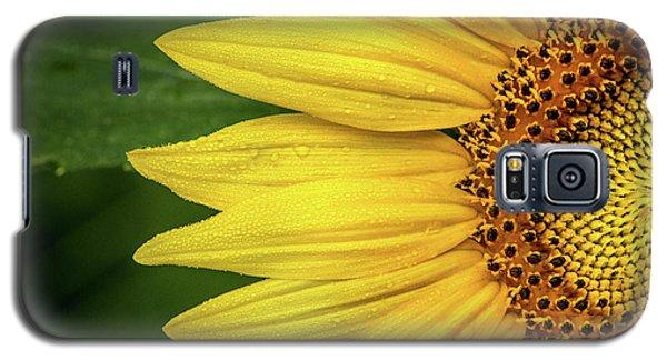 Partial Sunflower Galaxy S5 Case