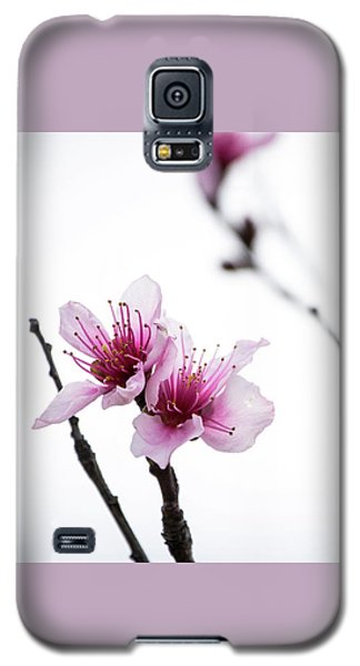 Peach Blossom Galaxy S5 Case