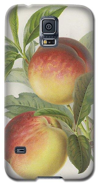 Peaches Galaxy S5 Case